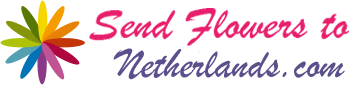 Send Flowers To Netherlands